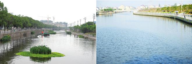 当前位置:资讯频道 > 搜索结果 近日,记者在余姚黄家埠镇高桥江边看到